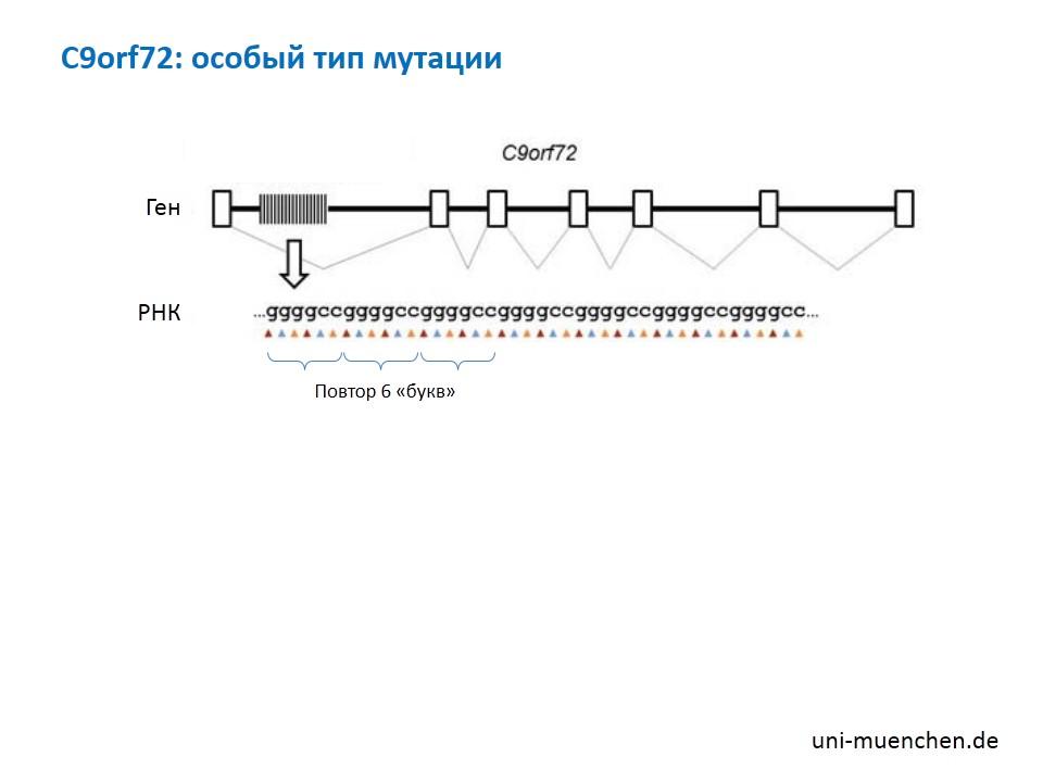 2019-05-14-slaid8-Konovalov