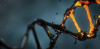 2019-05-21-mutacii-v-gene
