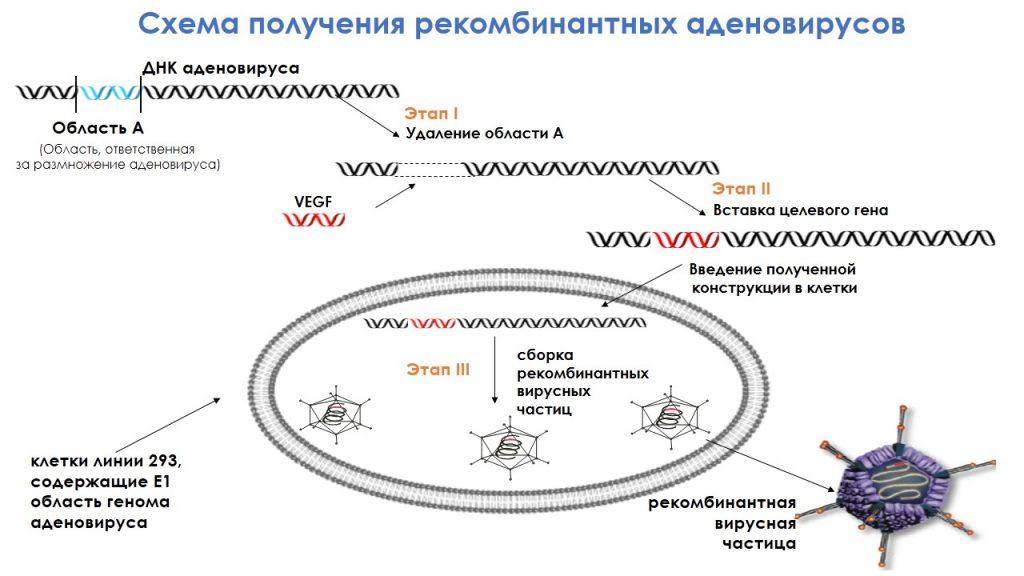 2019-09-10-adevask-2