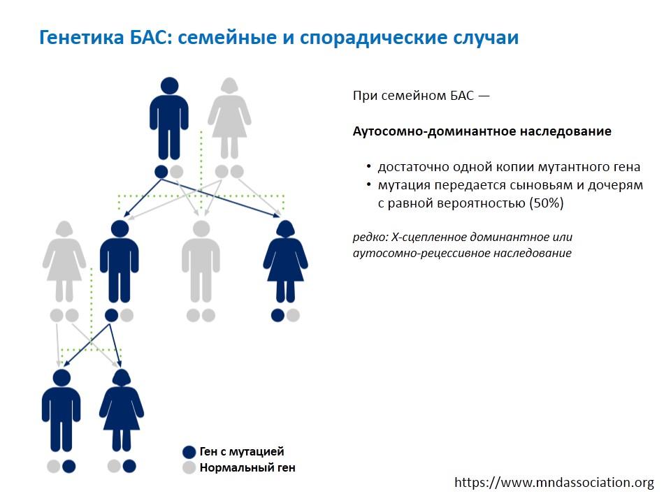 2019-05-14-slaid4-Konovalov